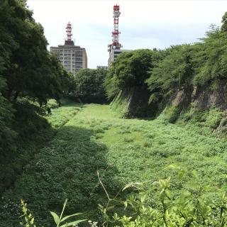 か で 城内 に 大きい 通称 何と 石材 を 呼ぶ もの 中 名古屋 た 石垣 積 の の 最も まれ